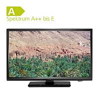 Reflexion Flat-TV 19 zoll Highline LEDW19