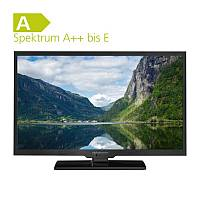 Alphatronics Flat-TV mit DVD Player SL-24 DSB+